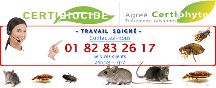 Nuisibles Epinay sur Orge